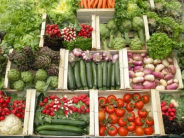 vegetales fuente de calcio