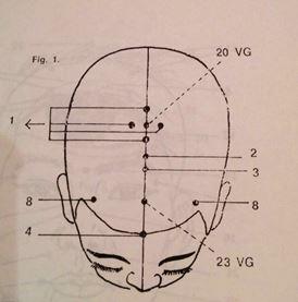 digitopuntura y concentración